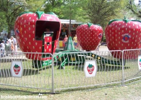 SpringFestTO Rides - Berry Go Round